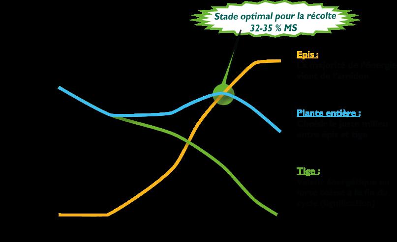 graphique_date_de_recolte_web