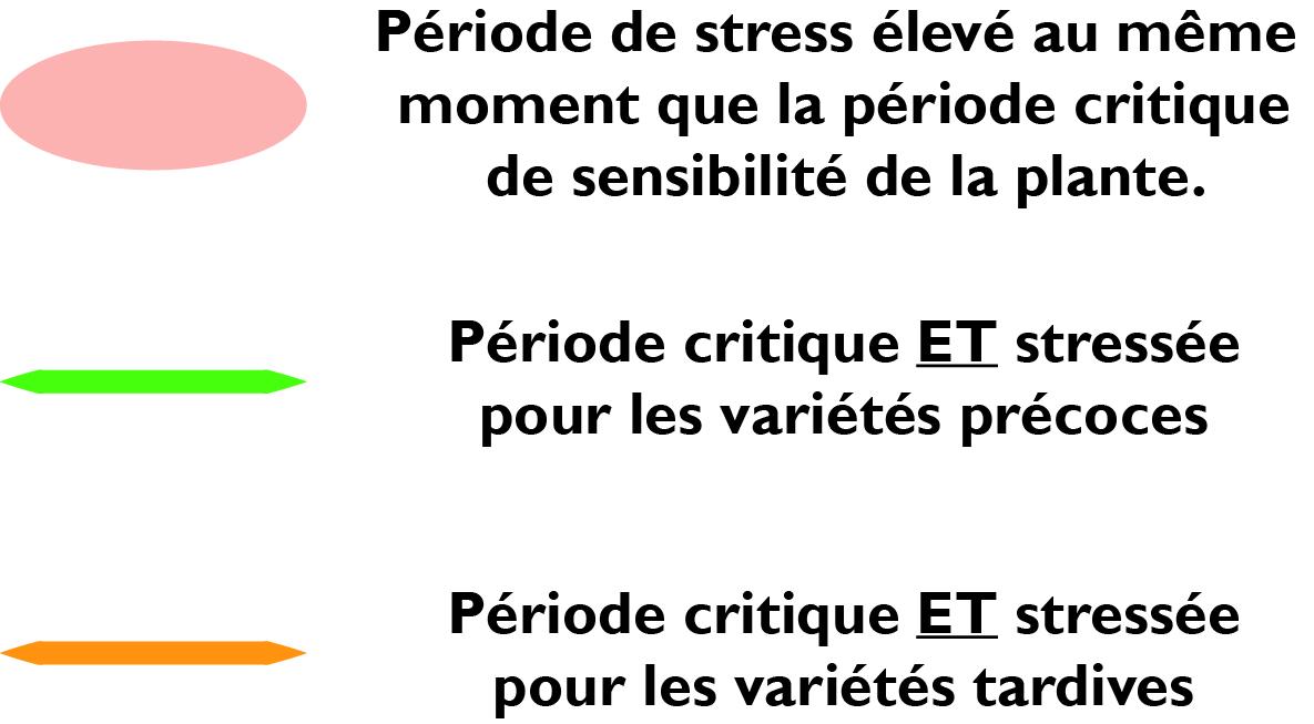legende methode esquive schema varietes precoces