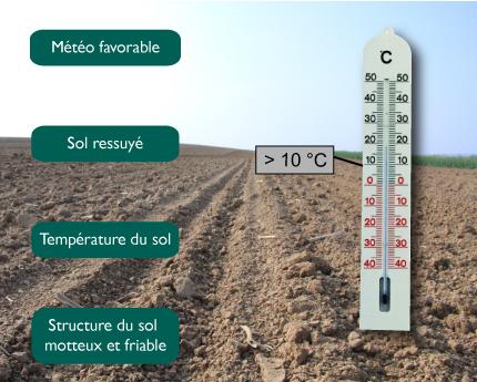 semences_de_france_date_semis_conditions2