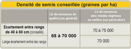 tournesol-tableau-densite-semis