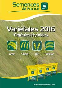 VARIETALES CEREALES hybride mars  bdef