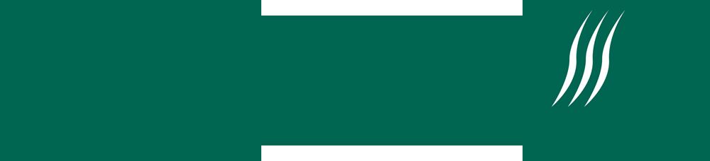 Logo SF horizontal moyen