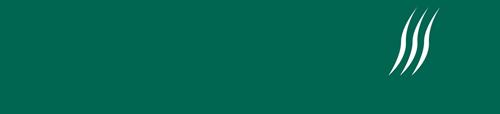 Logo SF horizontal petit