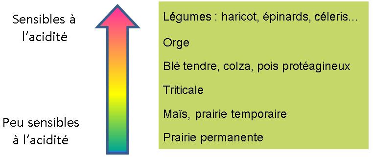 fig_fiche
