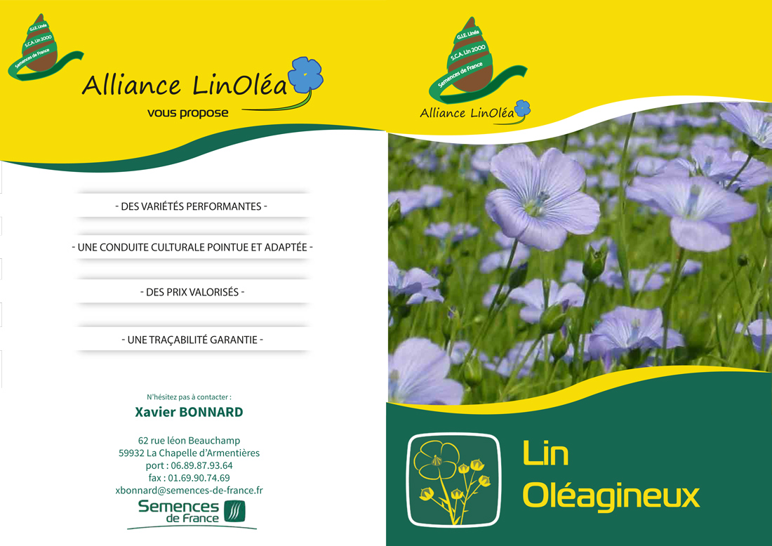 plaquette alliance linolea lin capp octobre  bdef