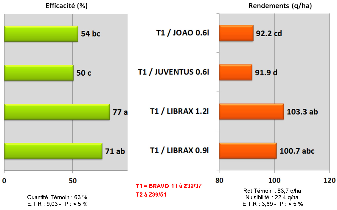 comparaison differents T2
