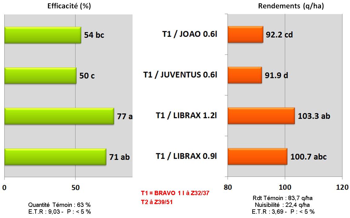 comparaison differents T2