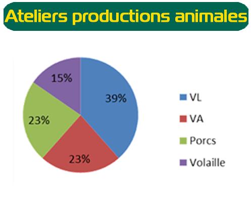 atelier production animale