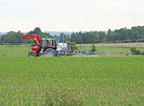 tracteur_parcelle_mais30