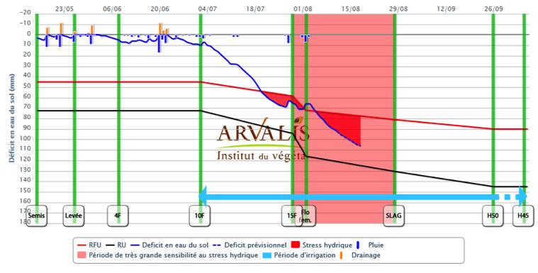 Variété précoce (SB) ex : LG30275 Semis 15 mai dans le Pays d'Auge (14) -Sol limon profond sain à bonne réserve hydrique (RU 150 mm)