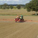 desherbage-cereales-automne-post-semis-1024