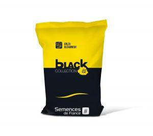 sac black